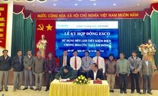 Phát động chương trình hỗ trợ nông dân tiết kiệm điện trong chong đèn hoa cúc tại Lâm Đồng