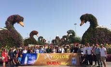1.000 khách Việt chinh phục Dubai