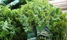 Mê mẩn những loại rau ngon, độc, lạ ở Hà Giang