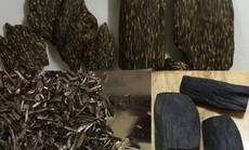 Vấn nạn trầm hương giả và cách phân biệt