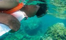 Cuối tuần lặn biển ngắm san hô dù không biết bơi
