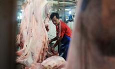 Tìm cách giảm giá thịt heo