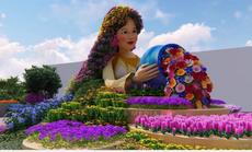 """""""Đẹp rụng rời"""" lễ hội hoa xuân tại Sun World Halong Complex"""