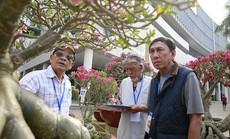 """Cuộc thi """"Hoa Cảnh"""" - Tôn vinh nét đẹp đặc sắc của các loài hoa kiểng Việt Nam"""