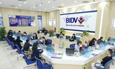Cảnh báo về các hành vi giả danh cán bộ BIDV, lừa đảo khách hàng