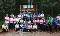 C.P Việt Nam chung tay trồng rừng bảo vệ môi trường xanh