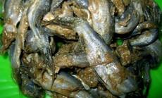 """Mắm bò hóc nặng mùi nhưng rất """"đưa cơm"""" của người Khmer Nam bộ"""