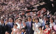 """""""Bữa tiệc vườn xuân"""" đầy đe dọa của ông Abe"""