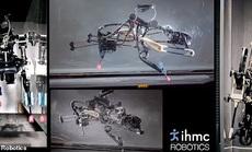 Robot tương lai muốn chạy vượt mặt vận động viên Olympic và động vật