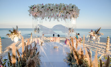Đám cưới tỉ phú Ấn Độ và những bí mật chưa từng được tiết lộ