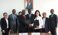 T&T Group ký hợp đồng mua 50.000 tấn hạt điều của Bờ Biển Ngà