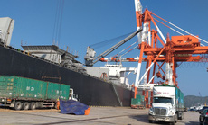 Vinalines đã chuyển tiền để thu hồi cảng Quy Nhơn về cho nhà nước