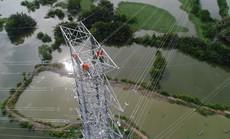 TP HCM đóng điện thành công đường dây 220kV Nam Sài Gòn - quận 8