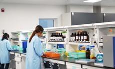 Doanh nghiệp đầu tiên được nhập khẩu thuốc trực tiếp