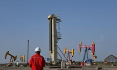 Công ty Trung Quốc ngừng mua dầu Venezuela vì ngán lệnh trừng phạt Mỹ
