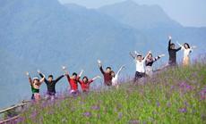Những hạnh phúc nảy mầm nơi đỉnh trời Fansipan