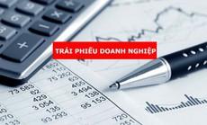 Trái phiếu doanh nghiệp: Lãi suất 10%-15%/năm là cao hay thấp?