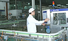 Nhân sự Vinamilk tham gia quản lý Bò sữa Mộc Châu và GTNfoods