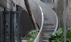 """Ngôi nhà có cầu thang """"ôm cây"""""""