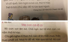 """Sách giáo khoa Tiếng Việt lớp 1 đầy """"sạn"""": Hãy để xã hội kiểm định, lựa chọn sách giáo khoa!"""
