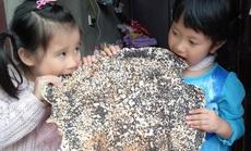 Bánh đa Kế, quà quê vùng Kinh Bắc