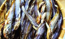 Con cá sông Mê Kông