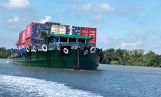 Thiếu container đóng hàng xuất khẩu
