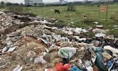 """Cận cảnh hàng trăm tấn rác """"tấn công"""" Khu tái định cư 38 ha ở quận 12"""