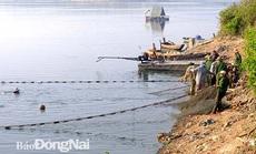 Đồng Nai: Nhiều người vây luồng cá nặng hàng tấn ở hồ sông Mây