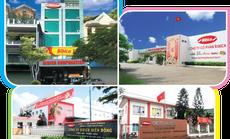 Việt Nam nhập 45 triệu USD bánh kẹo dịp Tết Canh Tý