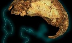 Bí ẩn về loài người khác tồn tại lâu hơn chúng ta gần 7 lần