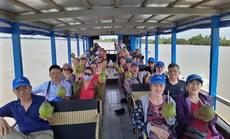 Lữ hành Saigontourist triển khai nhiều chùm tour kích cầu