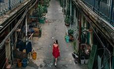Khách Tây thấy may mắn vì mắc kẹt ở Việt Nam