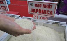 Sau nhiều lùm xùm, xuất khẩu gạo vẫn tăng trưởng mạnh nhất