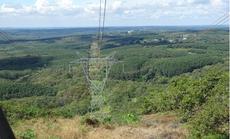 Đảm bảo an toàn tuyệt đối cho lưới điện miền Nam mùa khô năm 2020
