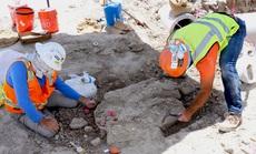 """Thành phố rùng rợn: đào đường, 3 lần lọt vào mộ phần """"quái thú"""""""