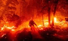 """""""Hoả ngục"""" bất thường ở Mỹ: Lốc xoáy lửa liên tiếp, cột khói cao khủng khiếp"""