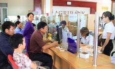 Gia tăng nguồn vốn tại địa bàn Tam nông,Agribank góp phần đẩy lùi nạn tín dụng đen