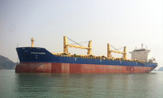 Ngân hàng sắp bán đấu giá 2 chiếc tàu và trụ sở của công ty vận tải biển
