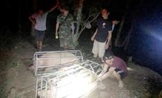 Xử nghiêm việc nhập heo từ Thái Lan rồi xuất lậu qua Trung Quốc để hưởng lợi
