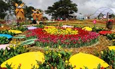 """Có gì đặc sắc ở lễ hội hoa """"kỷ lục"""" hơn 120 triệu Euro tại Quảng Bình?"""