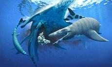 """Sinh vật chưa từng thấy trên thế giới: khủng long """"trá hình"""" cá mập"""