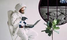 """Công nghệ """"siêu"""" hiện đại của ngôi nhà cho thuê trên Mặt Trăng"""