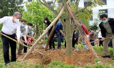 """Thừa Thiên - Huế: Xây dựng môi trường """"xanh, sạch, đẹp"""" tại đơn vị"""