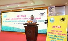 Canh tác lúa thông minh tại Đồng bằng Sông Cửu Long vụ Đông Xuân 2020-2021