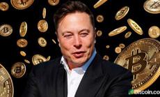 Tin lời người nổi tiếng, nhà đầu tư ngậm quả đắng