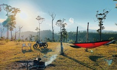 Vào rừng cắm trại trốn Covid-19