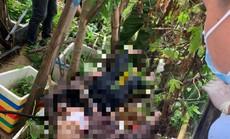 Đà Nẵng: Từ mâu thuẫn của nhóm bạn cùng phòng, một thanh niên tử vong