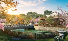 Onsen Quang Hanh - Nâng tầm giá trị vàng từ nguồn địa nhiệt trời ban