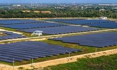 Phát hiện một số tồn tại trong đầu tư xây dựng điện mặt trời